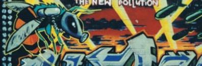 RoboWaspGraffiti