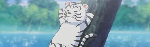 tigertama